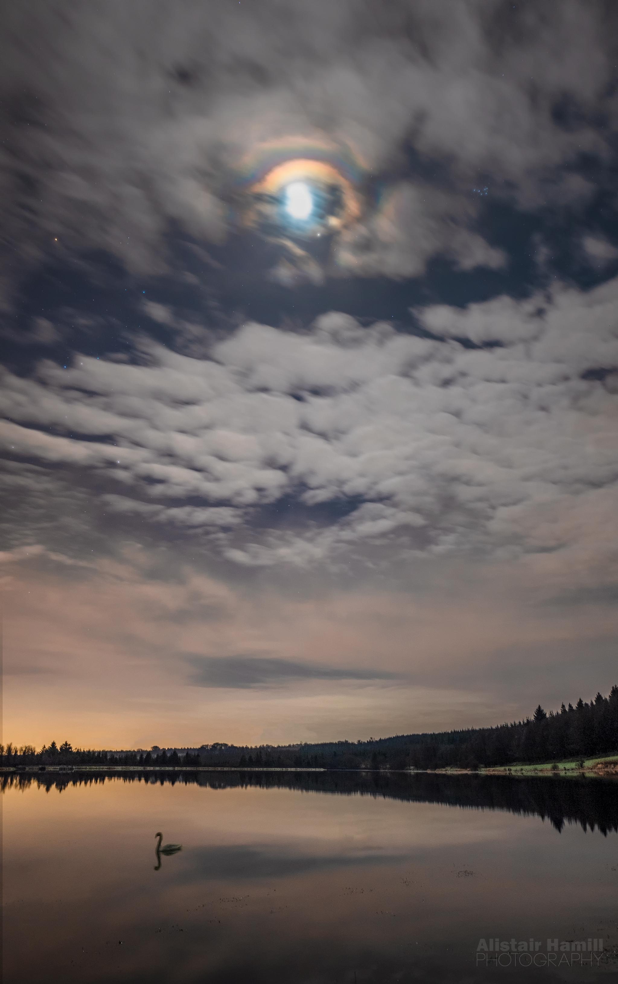 Swan lake (large) WM.jpg