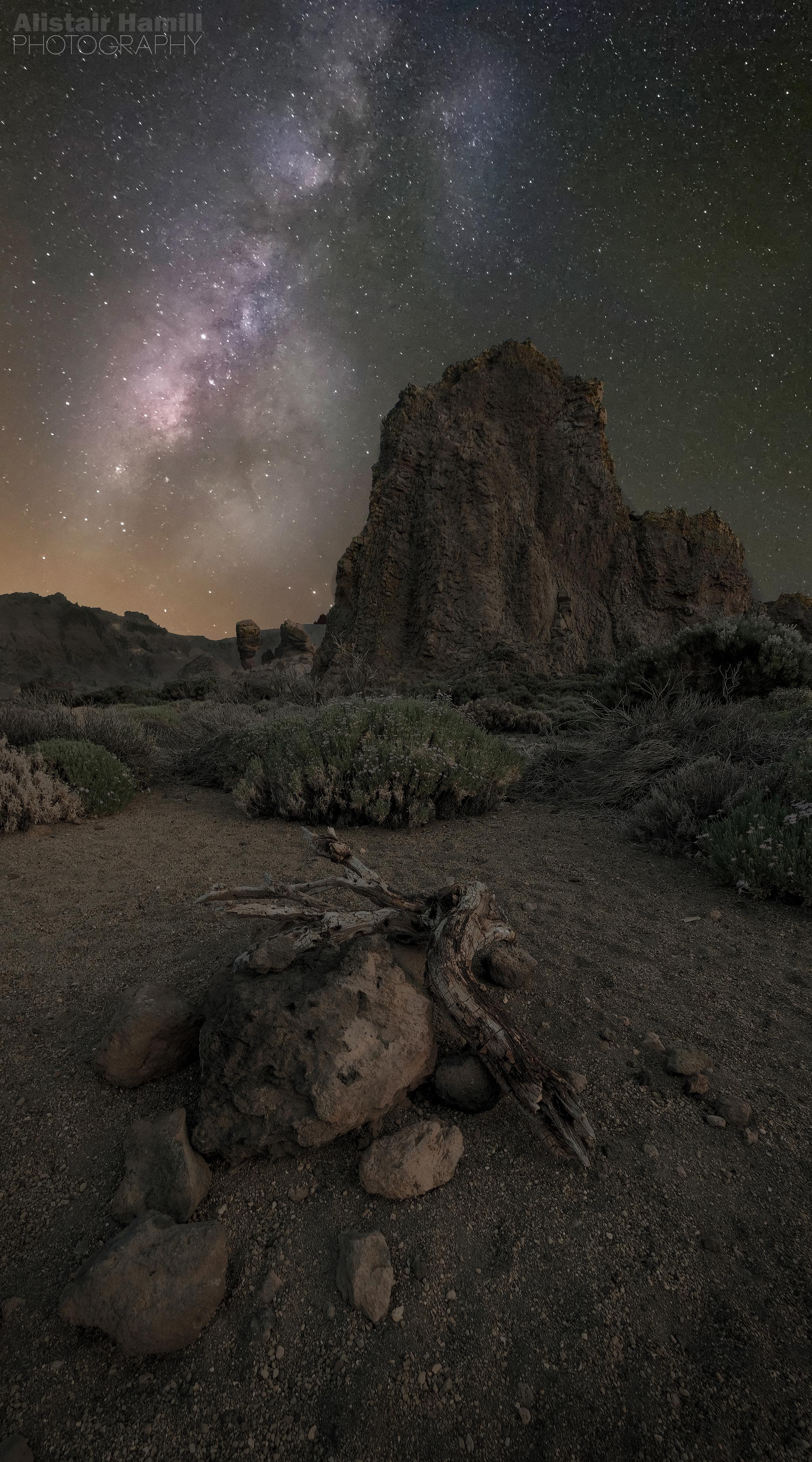 Desert floor Milky Way darker ground (large) WM.jpg