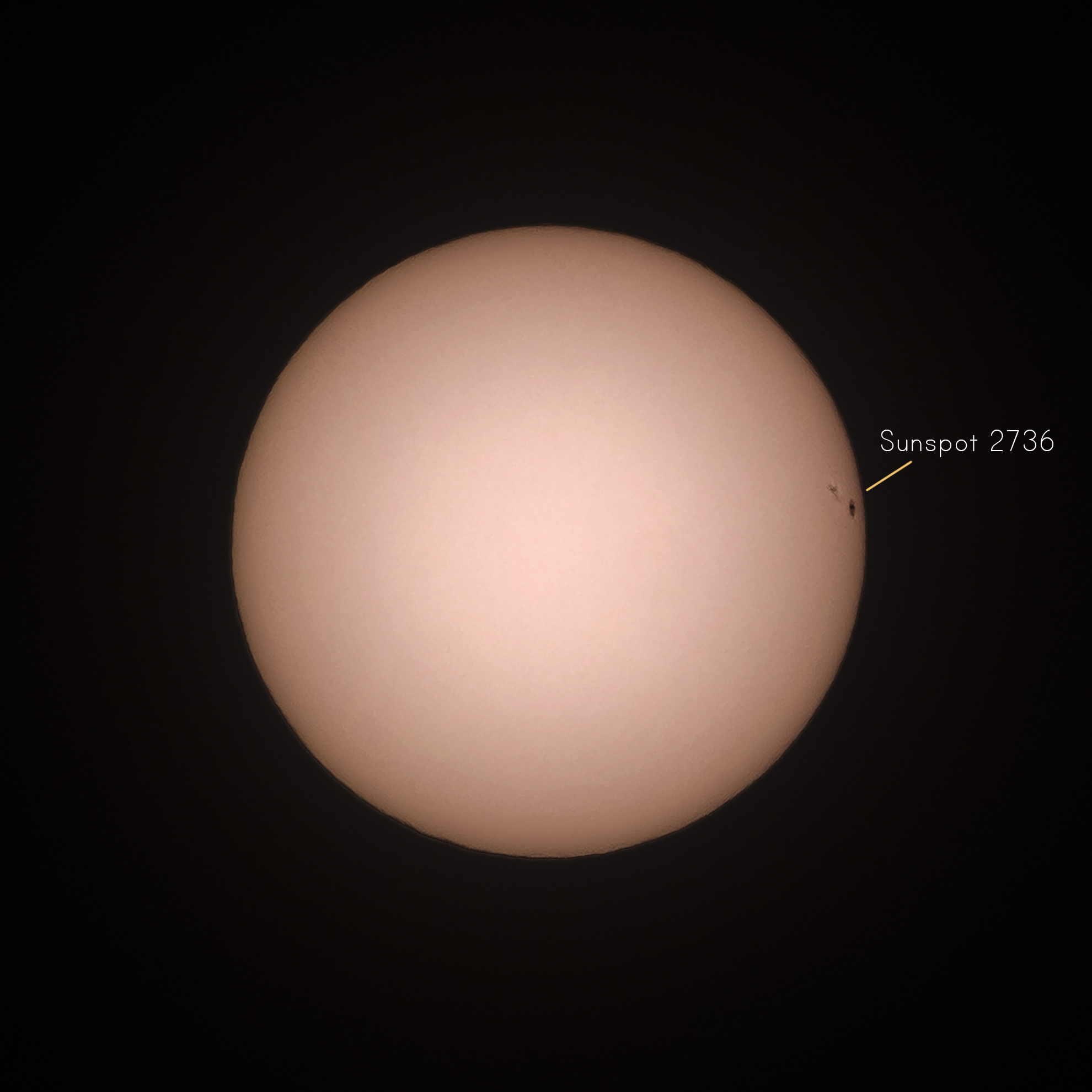 The sunspot, imaged on Saturday morning in my garden!