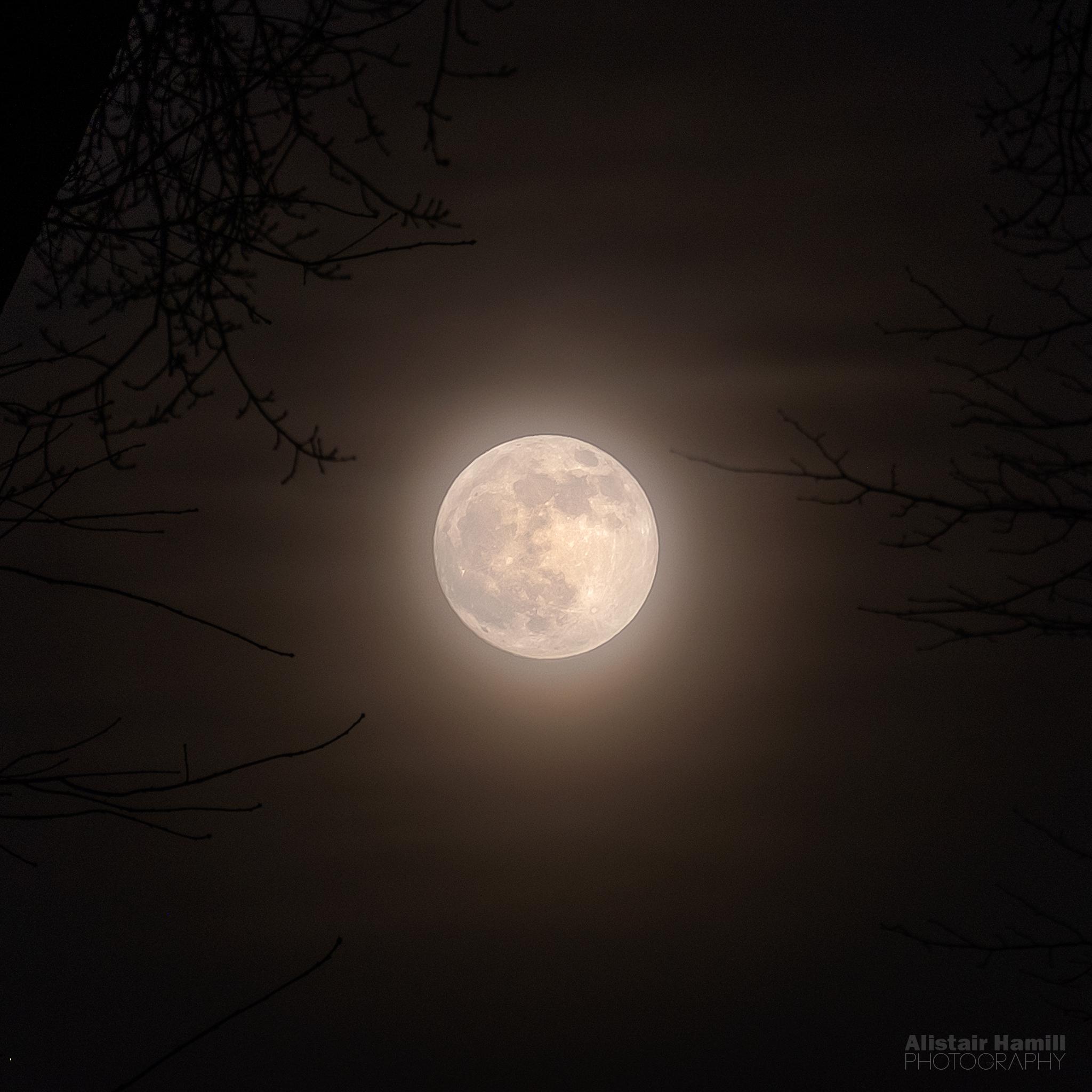 Super moon (large) WM.jpg