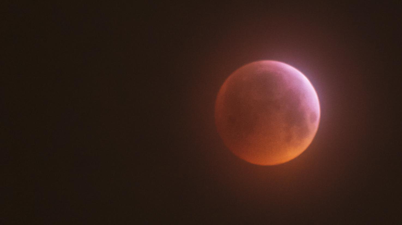 Red Wolf Moon 2.jpg