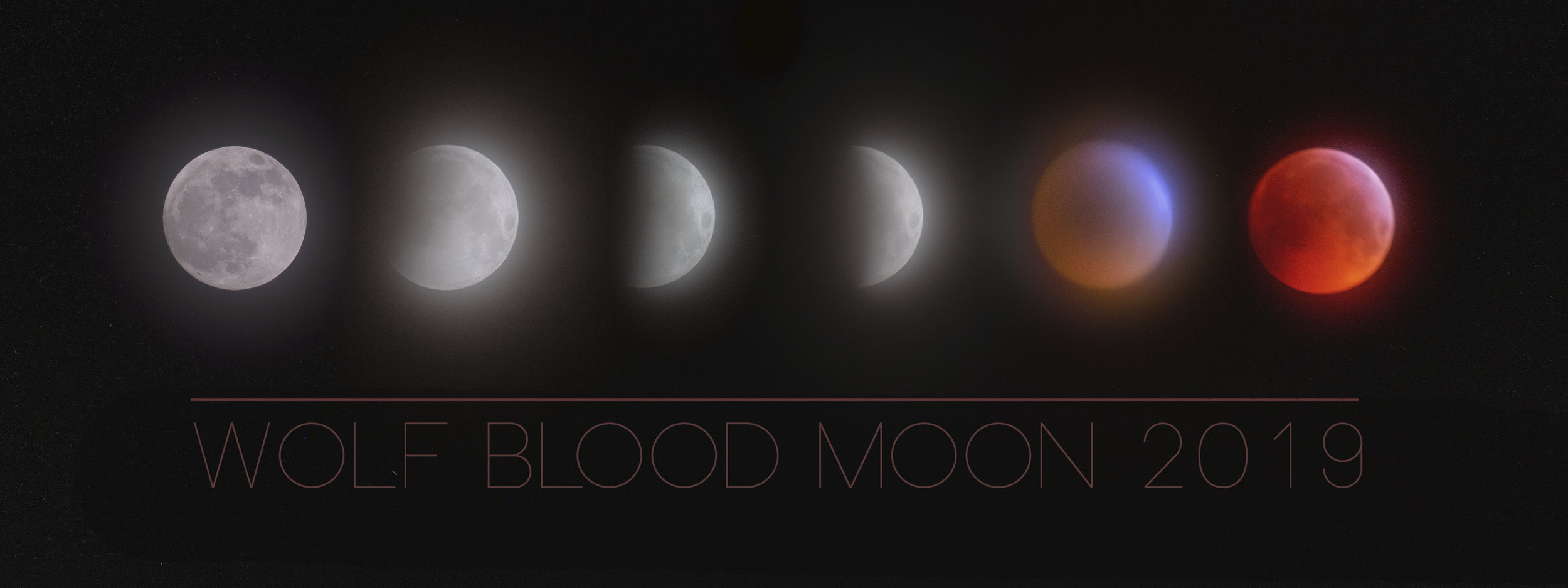 Wolf Blood Moon montage.jpg