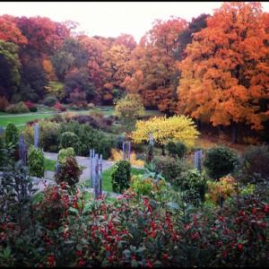 image source: berkshire botanical gardens