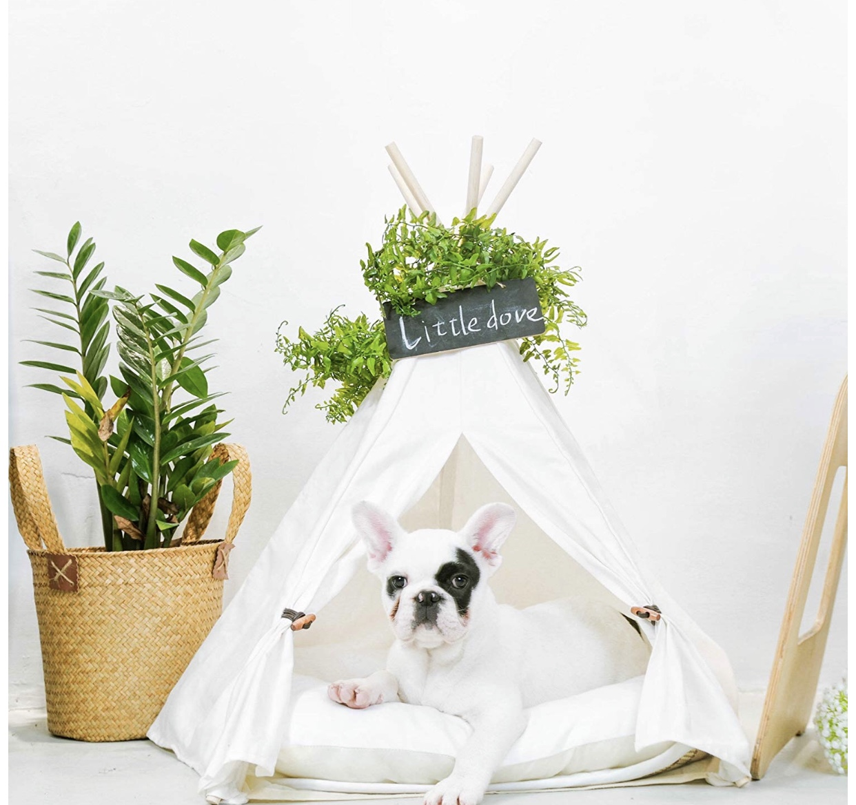 A Little Dove Pet Teepee