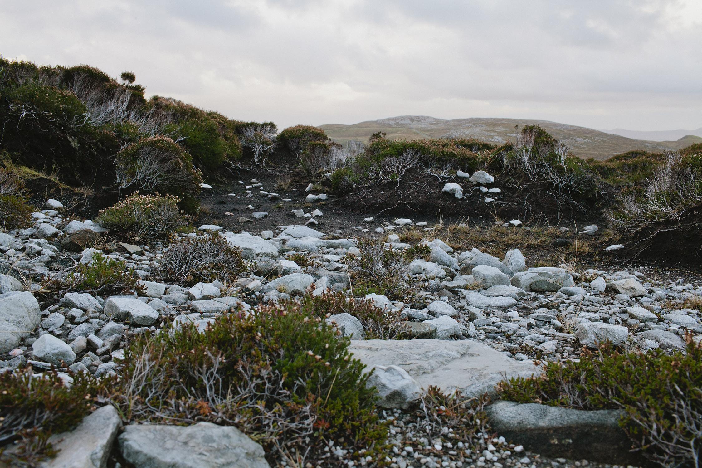 lifestyle-editorial-travel-washington-dc-malek-naz-photography-ireland-rocks.jpg