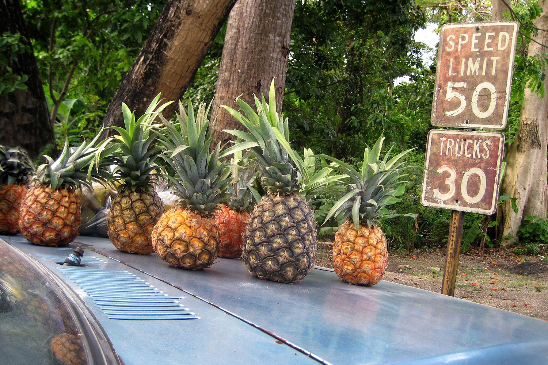 lifestyle-editorial-travel-washington-dc-malek-naz-photography-pineapples-jamacia.jpg