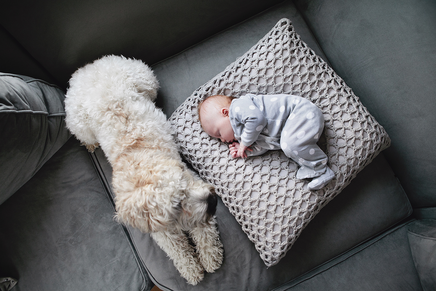 lifestyle-editorial-children-washington-dc-malek-naz-photography-contempo-kids-baby-dog.jpg