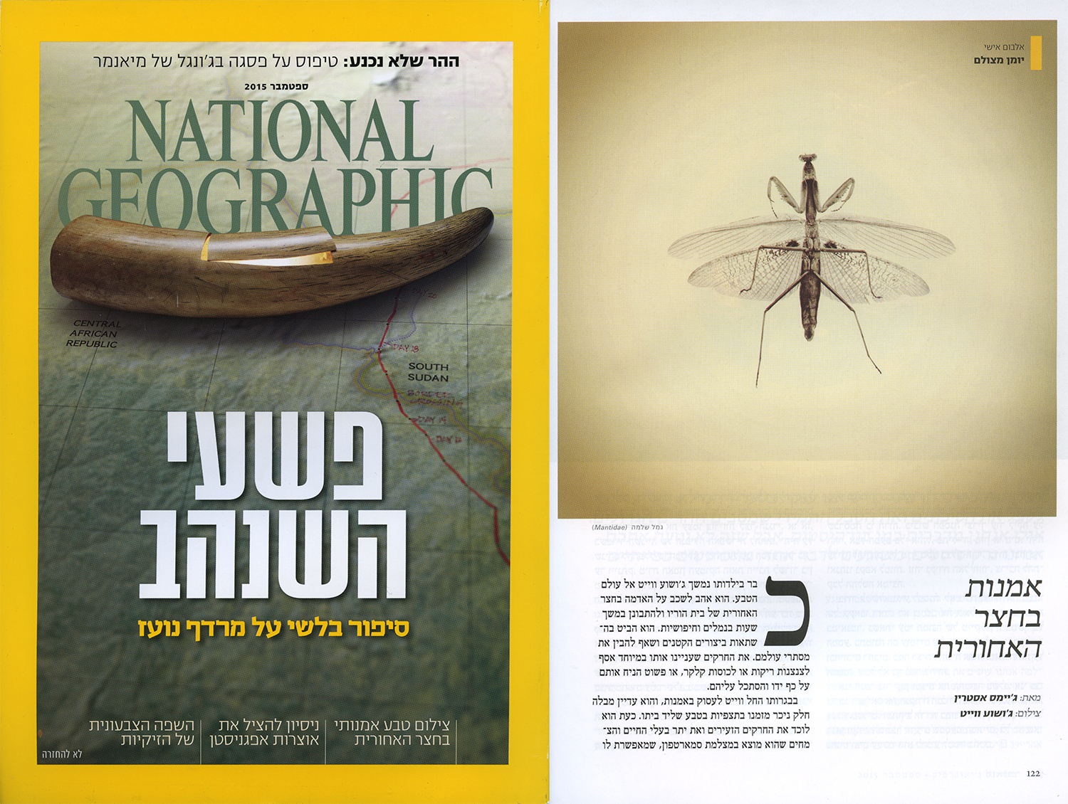 5 Joshua White - National Geographic Israel.jpg