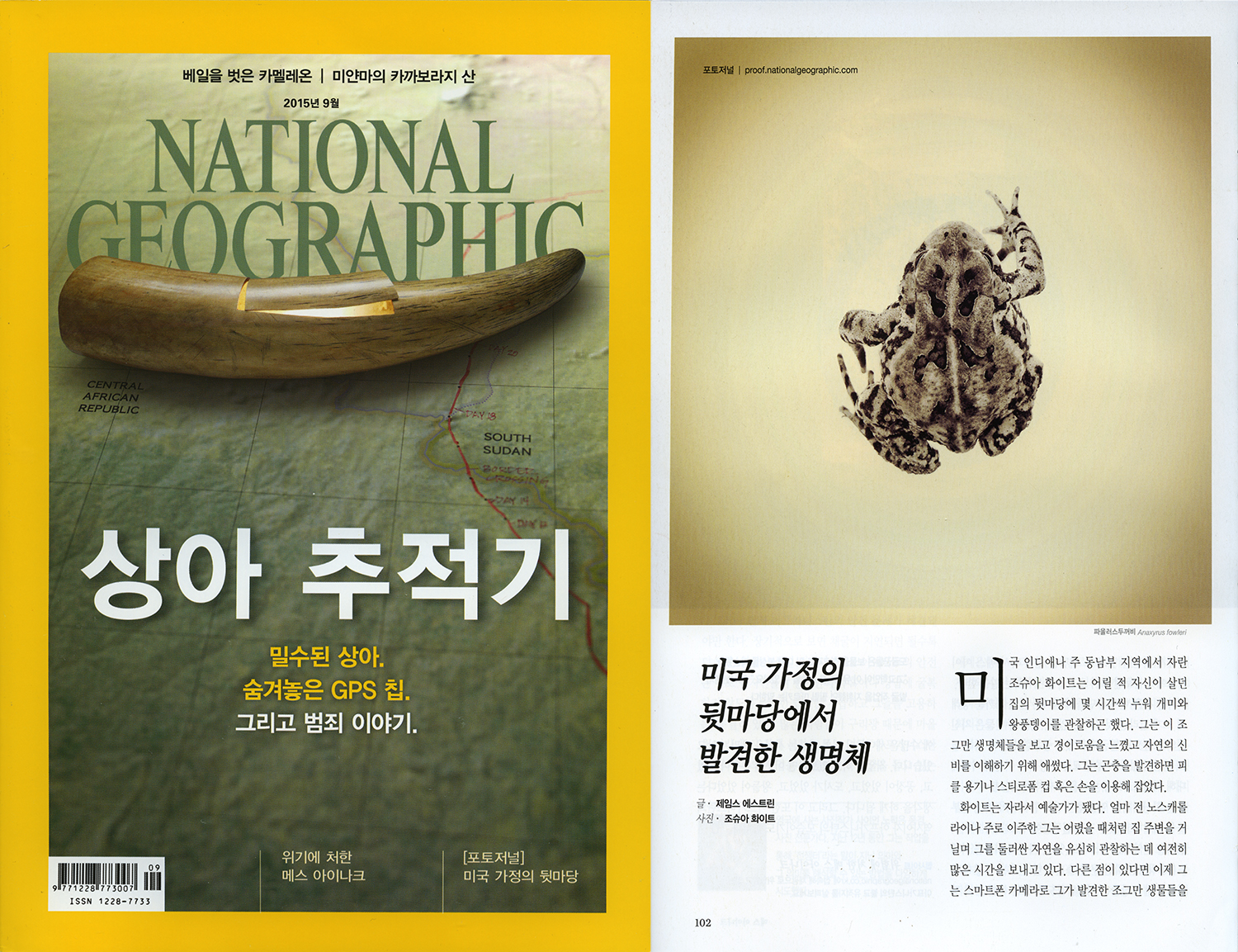 6 Joshua White - National Geographic Korea.jpg