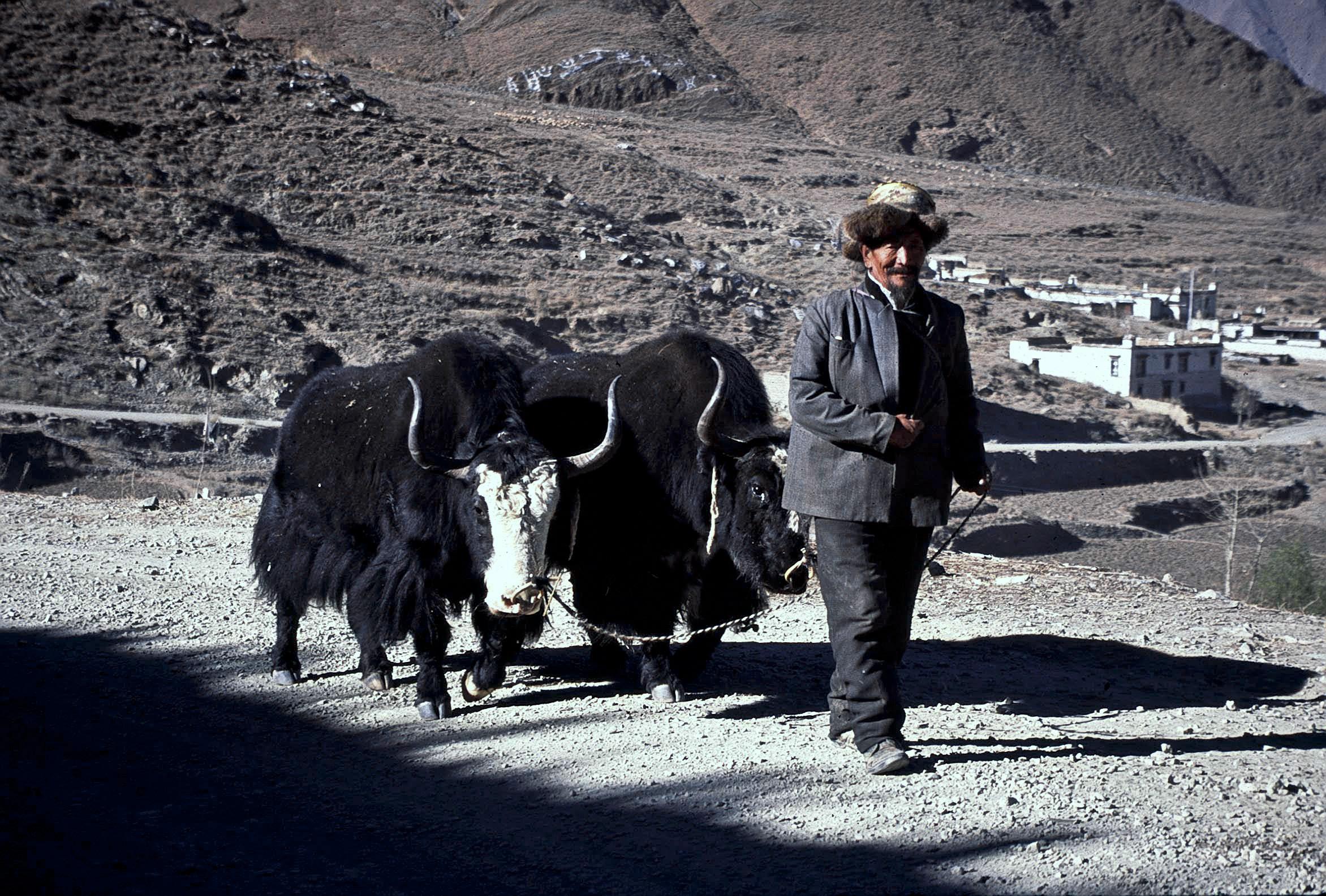 On the Way to Shigatse, Tibet