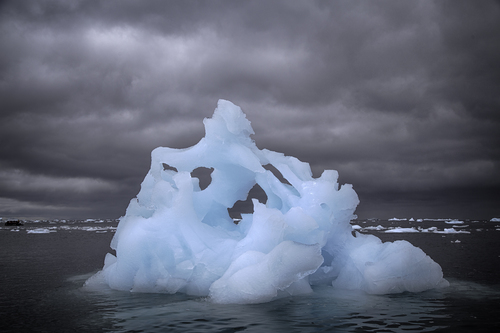 iceberg-cierva-cove-2.jpg