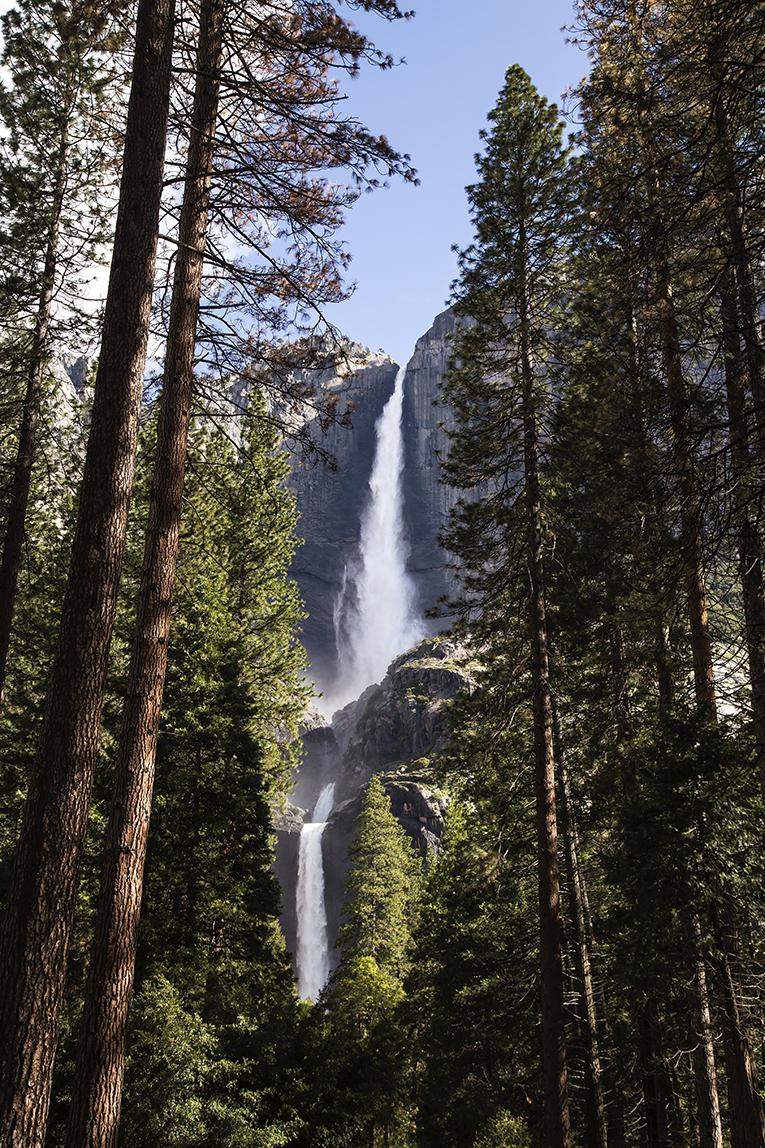 Yosemite_ Falls_1.jpg