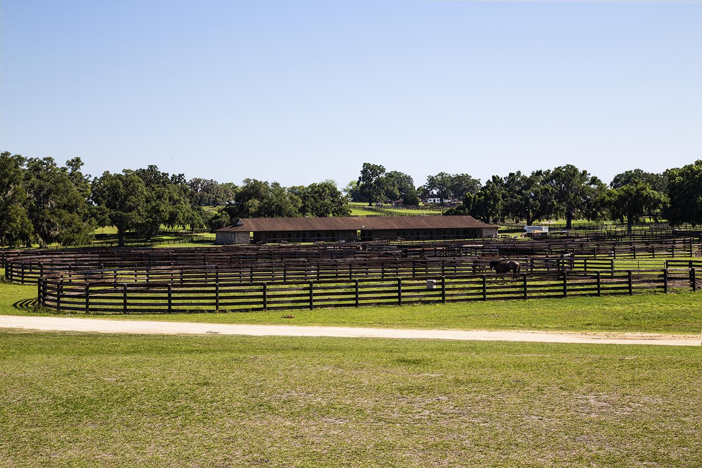 Winding Oaks Farm