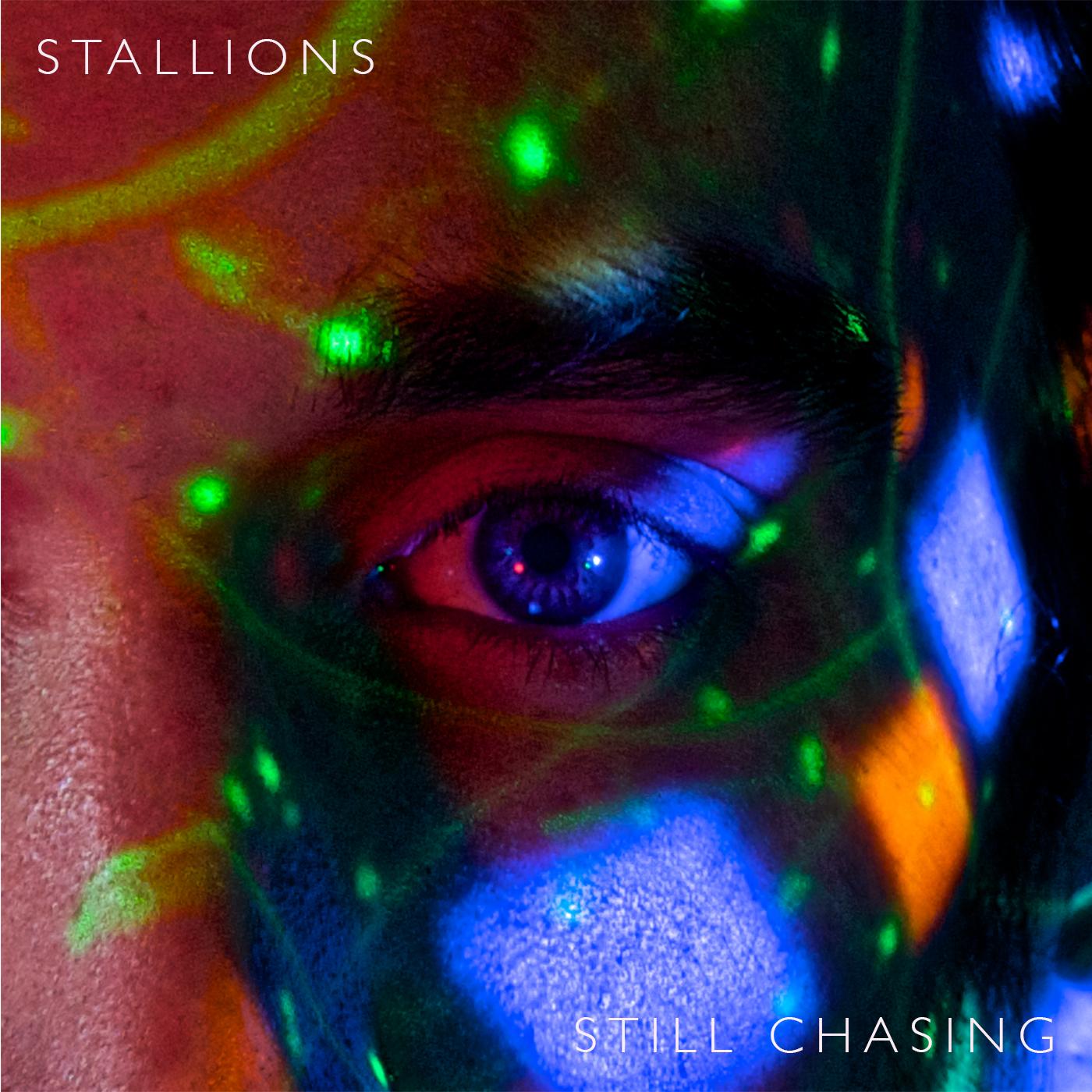 Photo: Stallions
