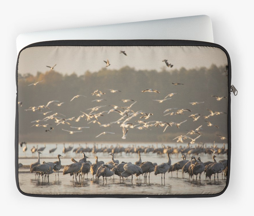 """Common Cranes at sunrise"" laptop sleeve"
