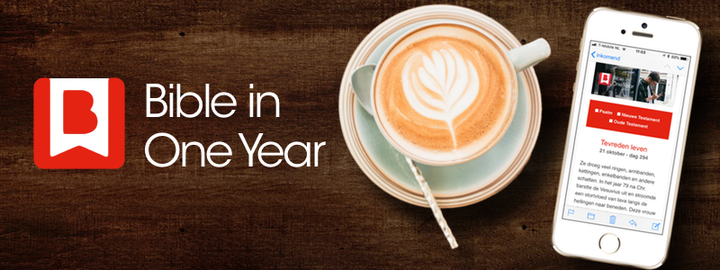 Bible in One Year banner website.png