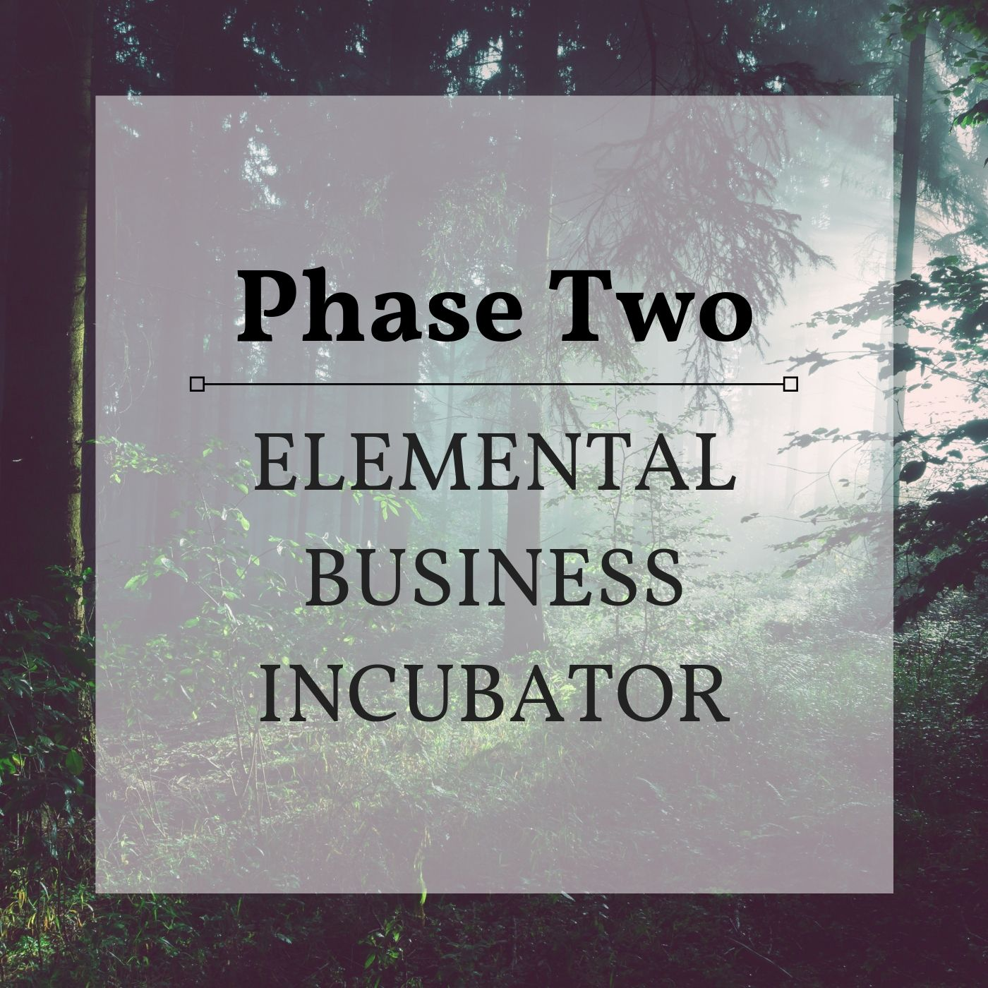 - Phase 2 is about integration, magic and ritual. It's where you connect more deeply with other members of the Incubator.