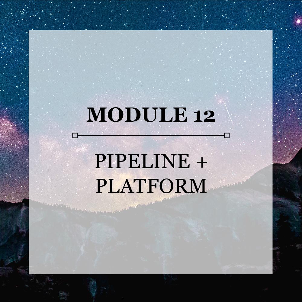 Module 12 Pipeline and Platform.jpg