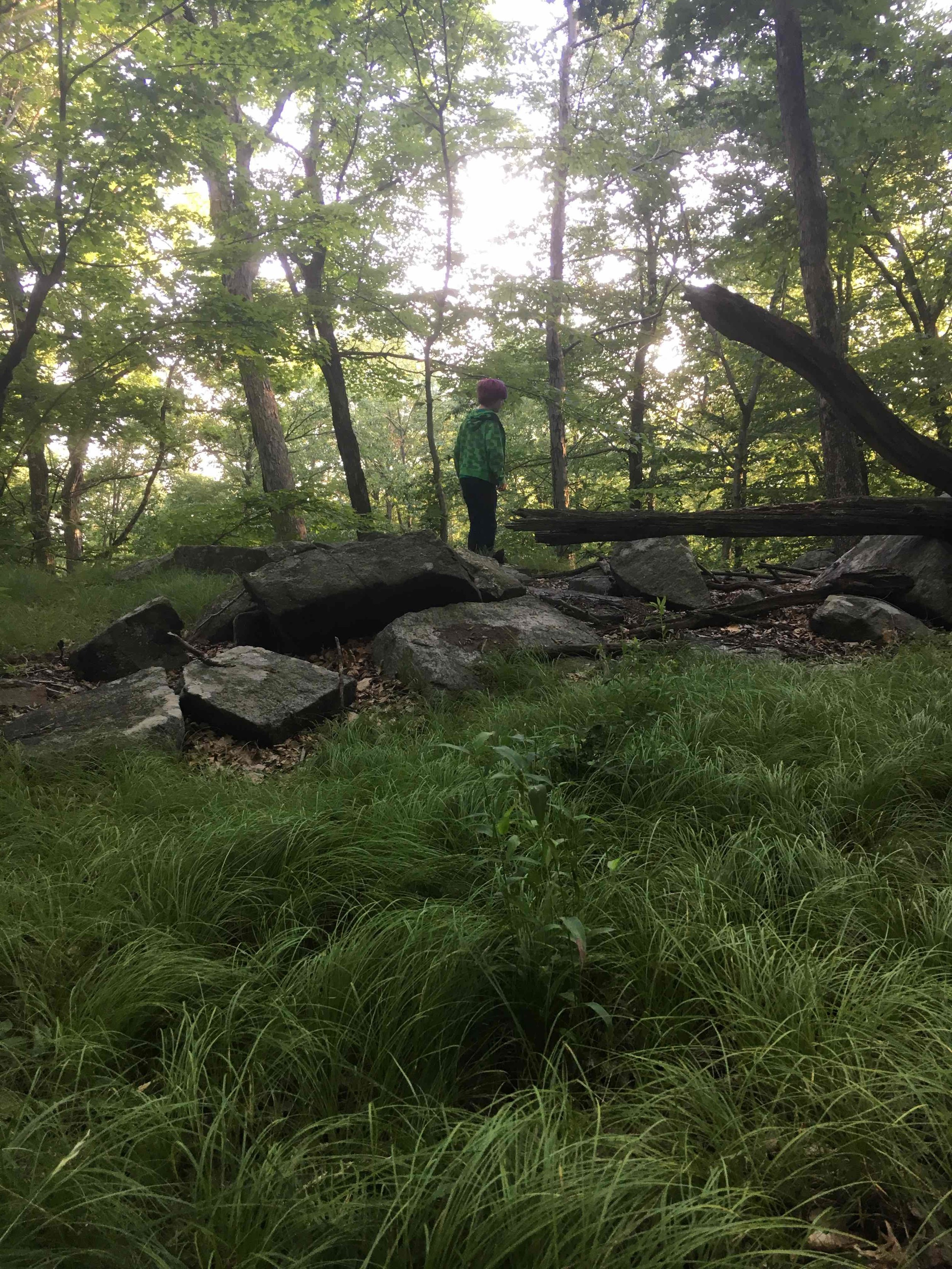 Being bored in nature