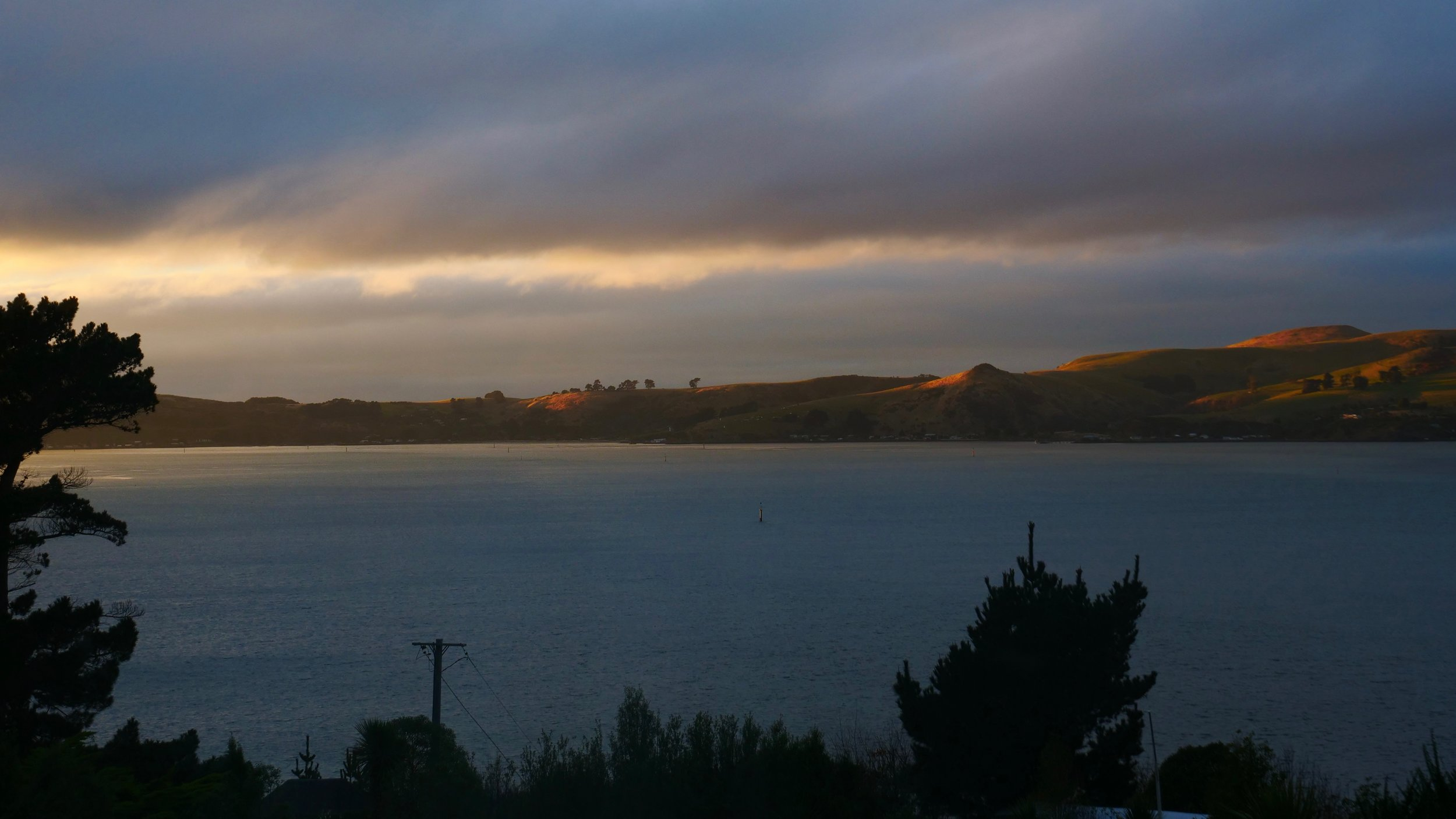 Sunrise view of Dunedin Harbour from the farmhouse