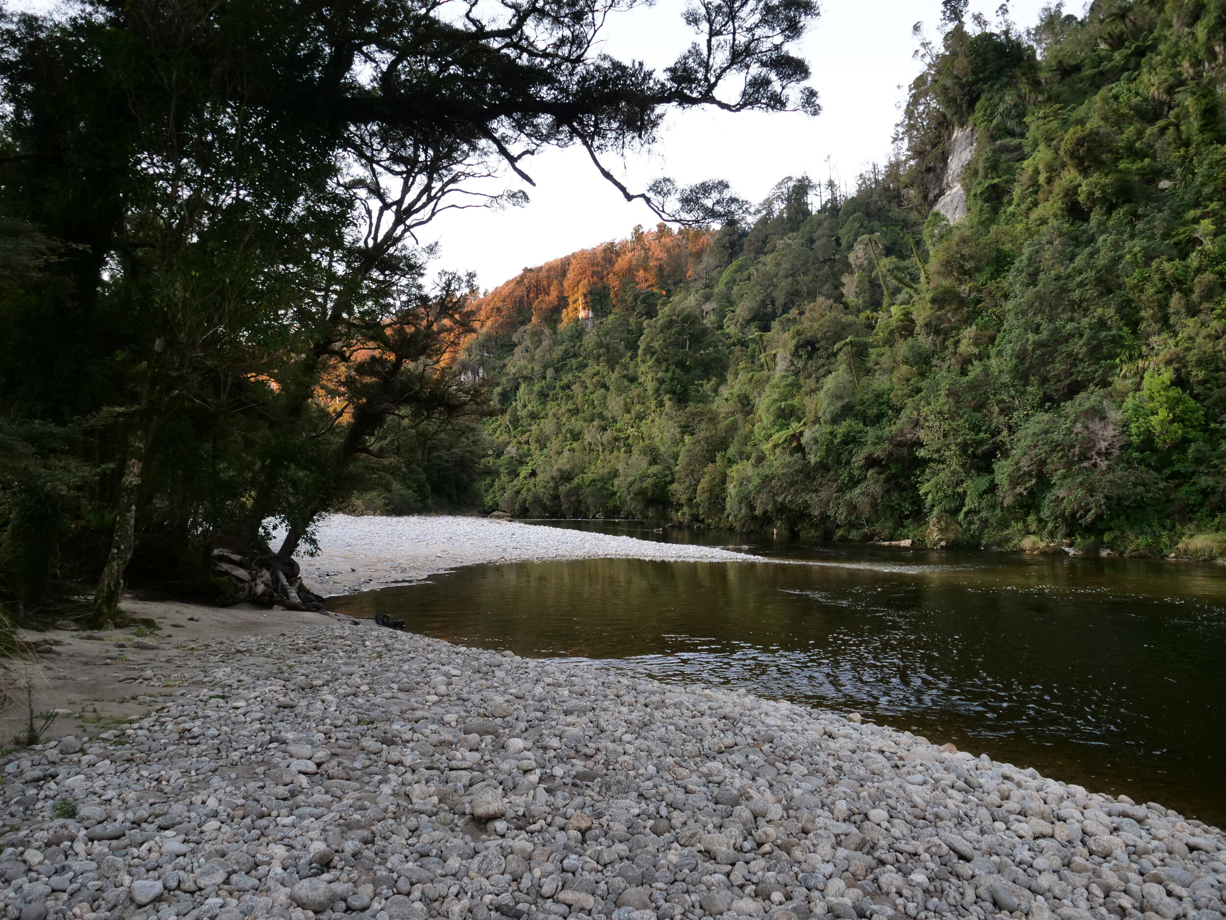 The Waitakere River