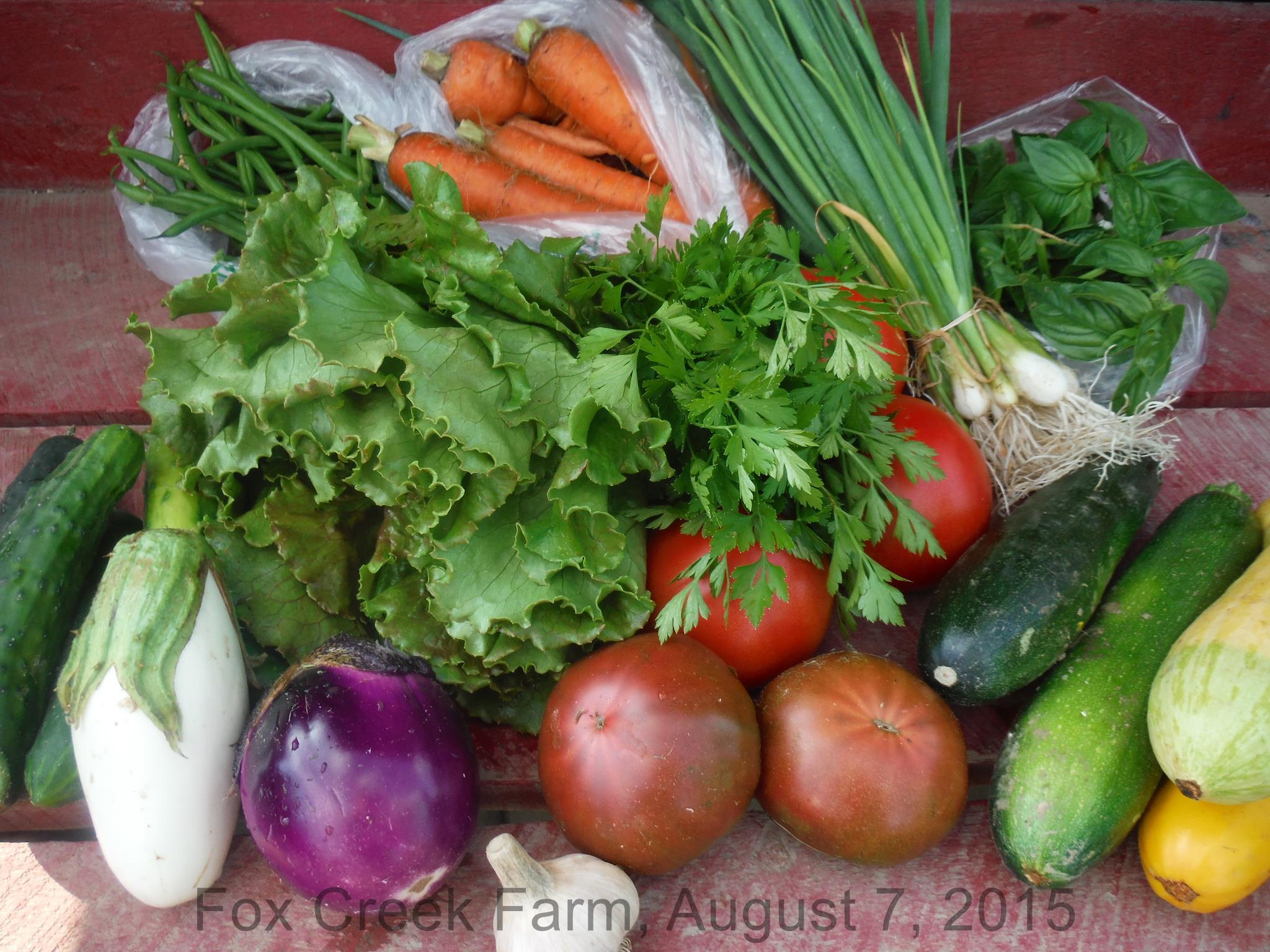 August produce from Fox Creek Farm