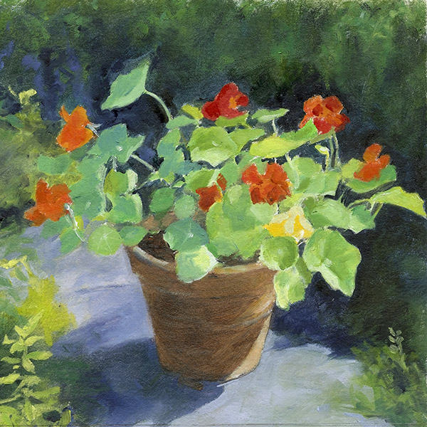 Nasturtiums in a Clay Pot