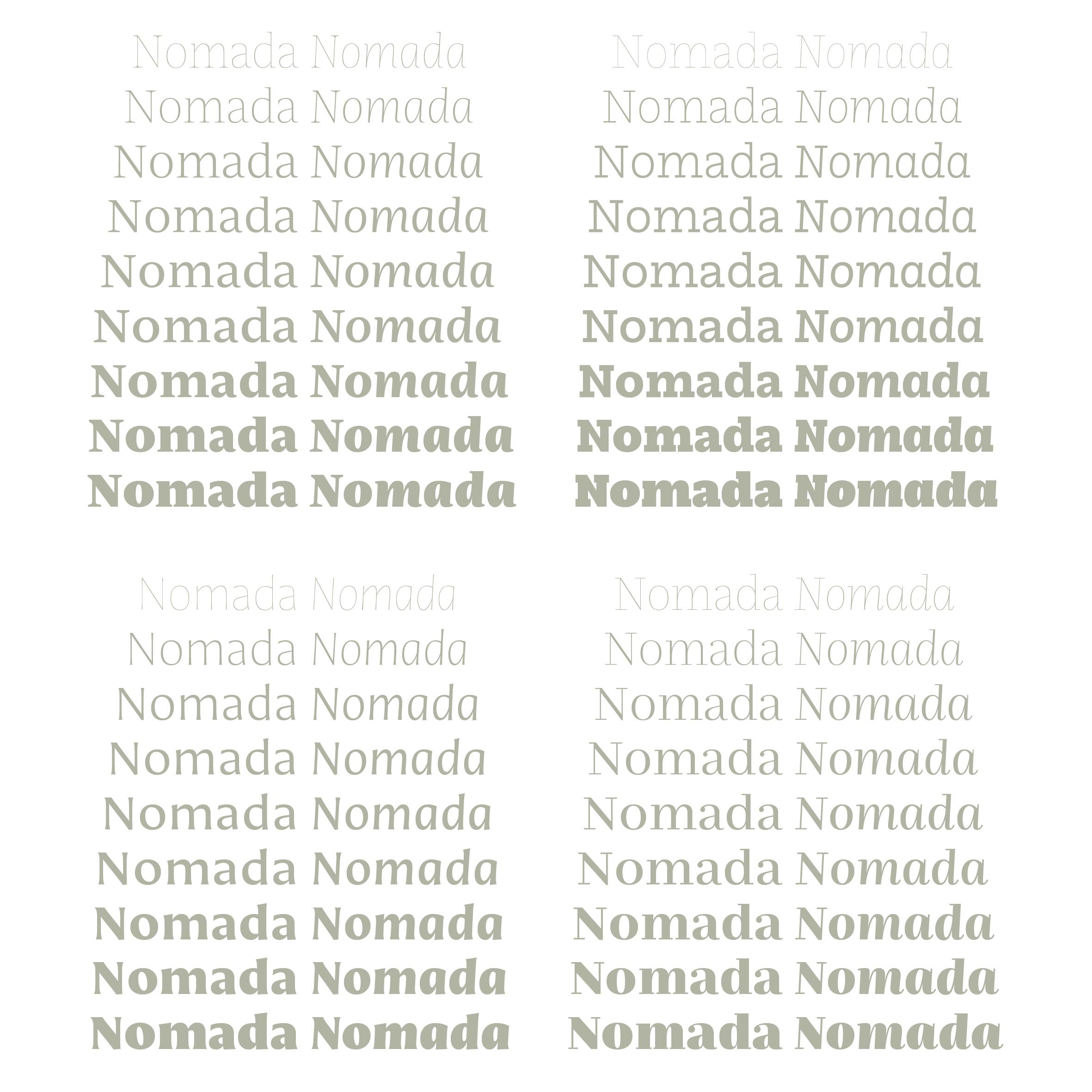 Nomada6.jpg