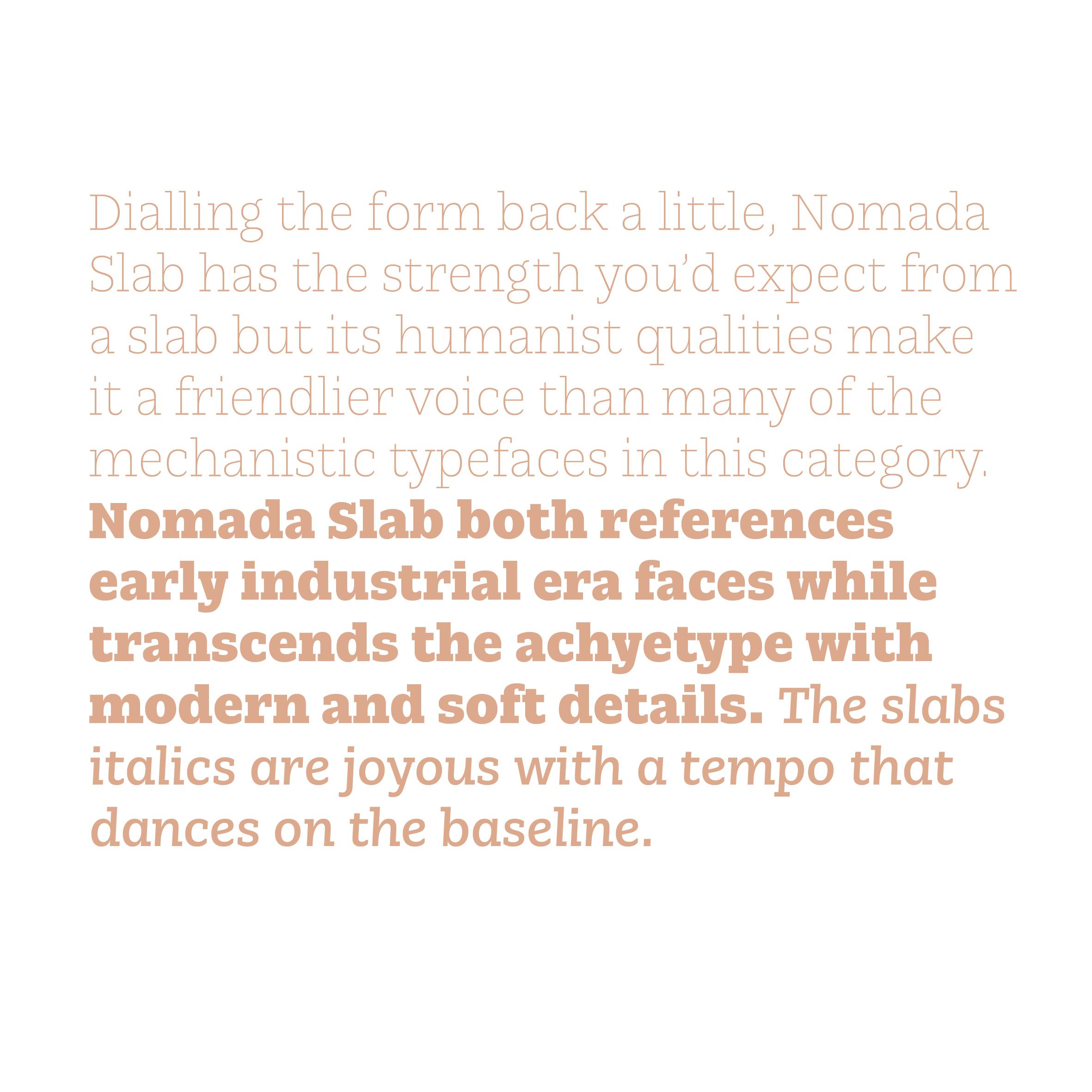 Nomada8.jpg