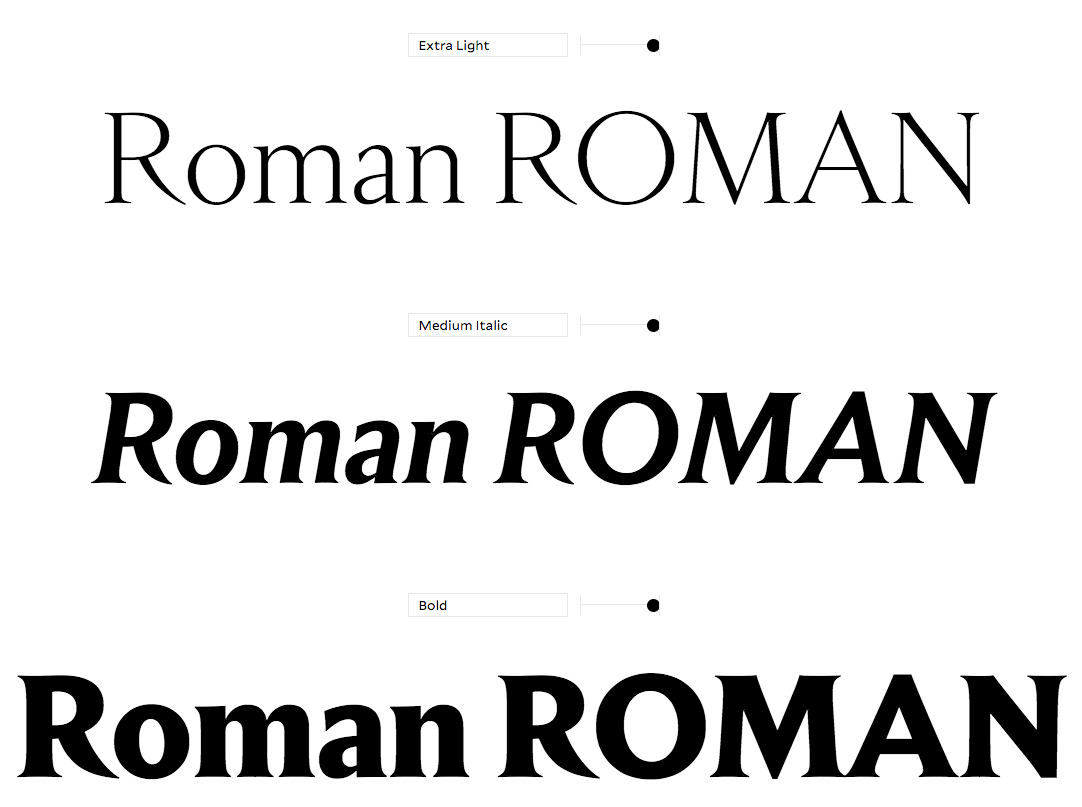 Empirica is versatile and diverse. Its various styles weight distribution and contrast are all unique but share foundational cues which make the family cohesive. Empirica offers a full palette for editorial, branding and identity projects. For the largest headline settings, Empirica offers alternate short descenders for tighter line spacing.