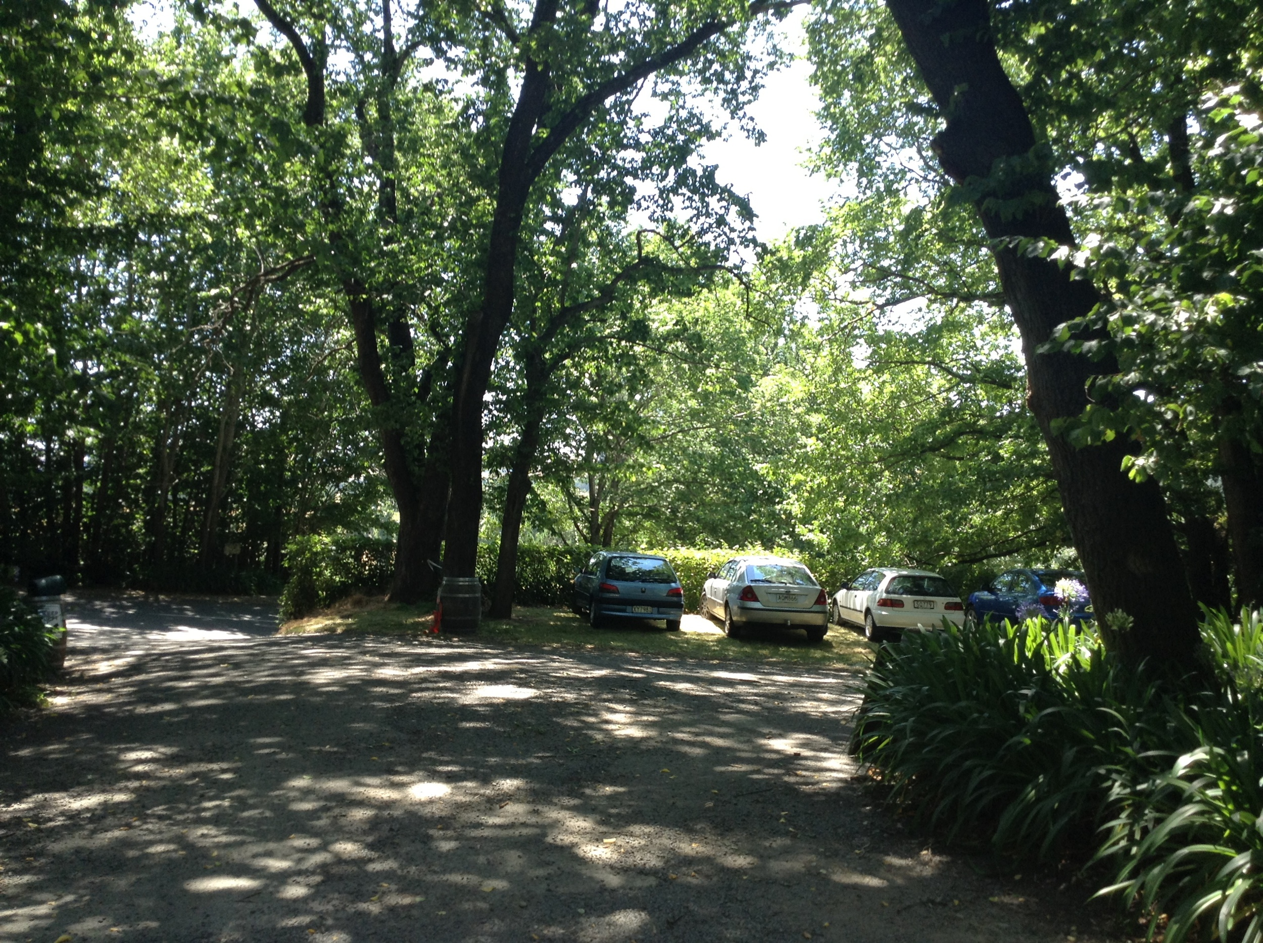 The leafy car park was welcome respite from the heat of the day.