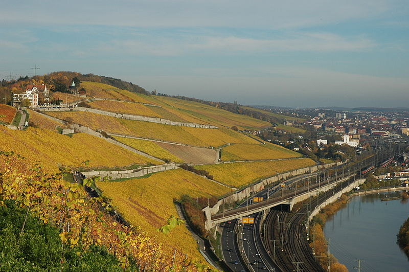 The well known 85ha 'Würzburger Stein' vineyard on a hill outside the city ofWürzburg.