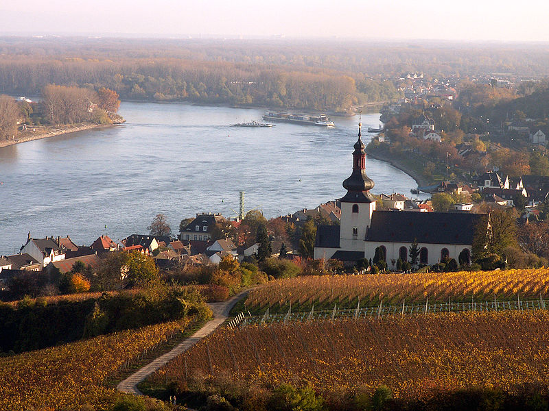 """View from the """"Red Slope"""" towards Saint Kilian's Church, Nierstein   Photo by :R. Dautermann"""