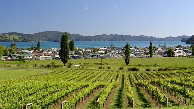Mercury Bay Estate  located on Waikato's Coromandel Peninsula.