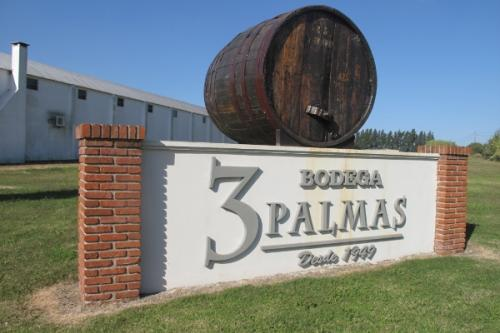 Bodega 3 Palmas , established in 1949, was one many vineyards founded in Montevideo by Italian immigrants.