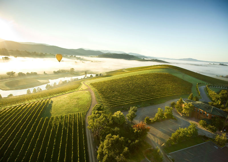Hot-air ballooning above vineyards in the Yarra Valley wine region of the Port Philip zone.