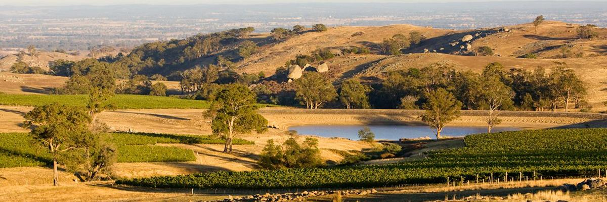 Fowles Wine , Strathbogie Ranges