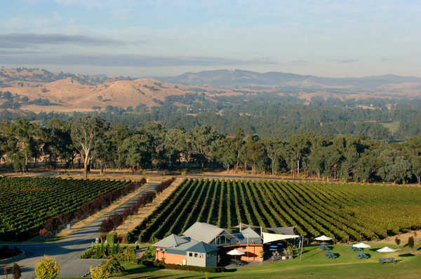Gapsted Wines , Alpine Valley region