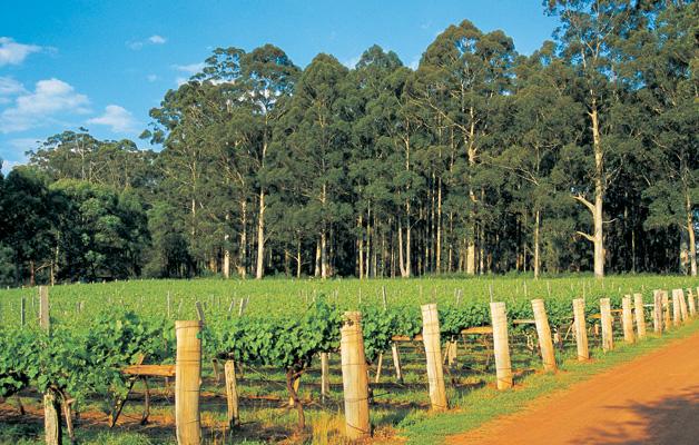 Gloucester Ridge Winery  - Pemberton