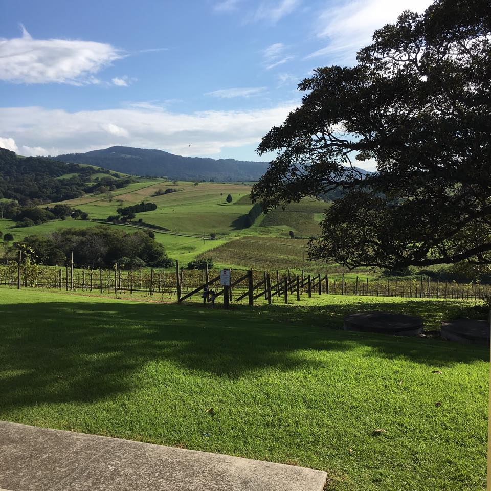 Crooked River Wines  - Shoalhaven Coast
