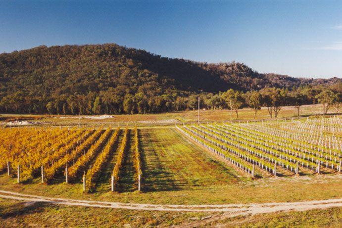 Symphony Hill Winery , Granite Belt
