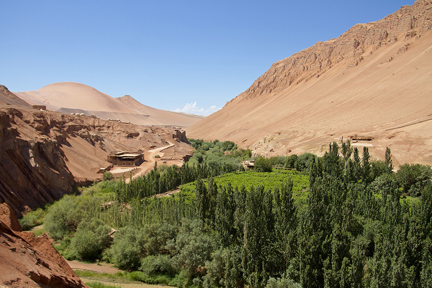 Puchang Vineyards  near the Thousand Buddha Caves - Flaming Mountains, Turpan,Xinjiang