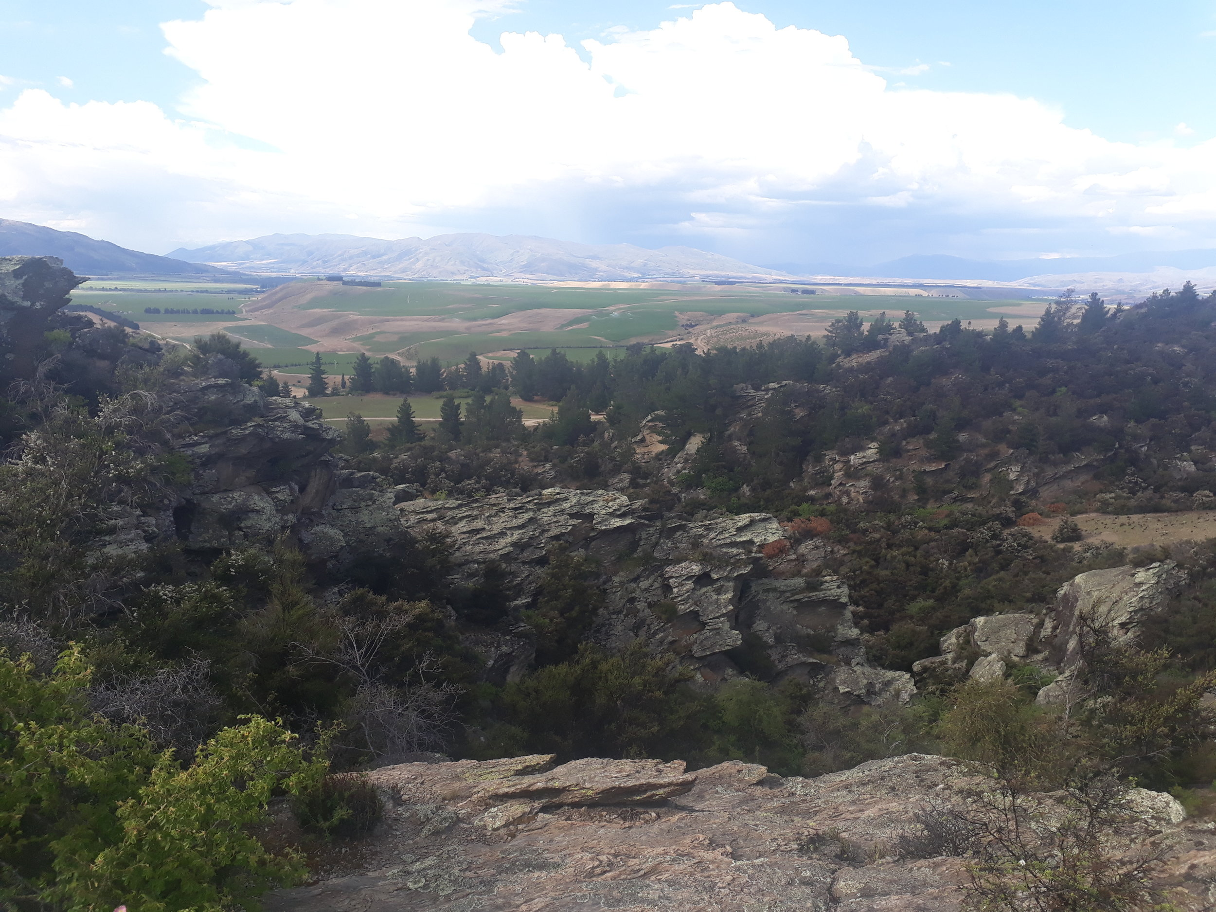 The canyon in the foreground with Bendigo's vineyards stretching away into the distance.