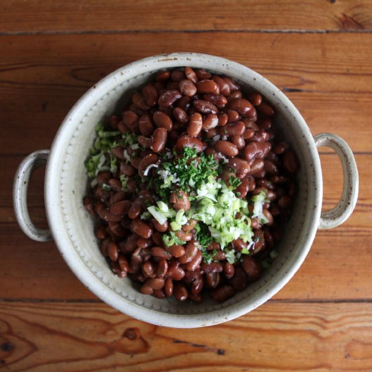 pastoral-vermont-ann-suokko-beans