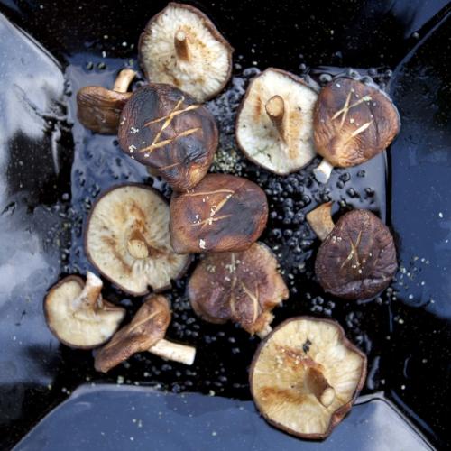 Juniper Salt on Roasted Shiitake