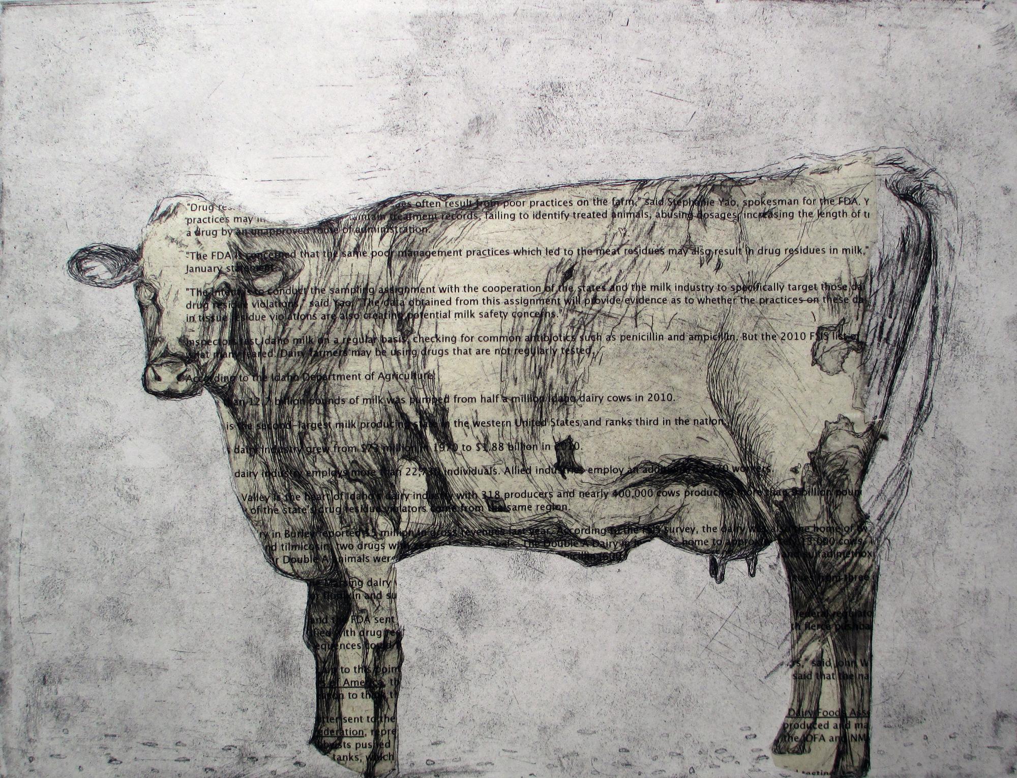 Idaho Dairy Cow