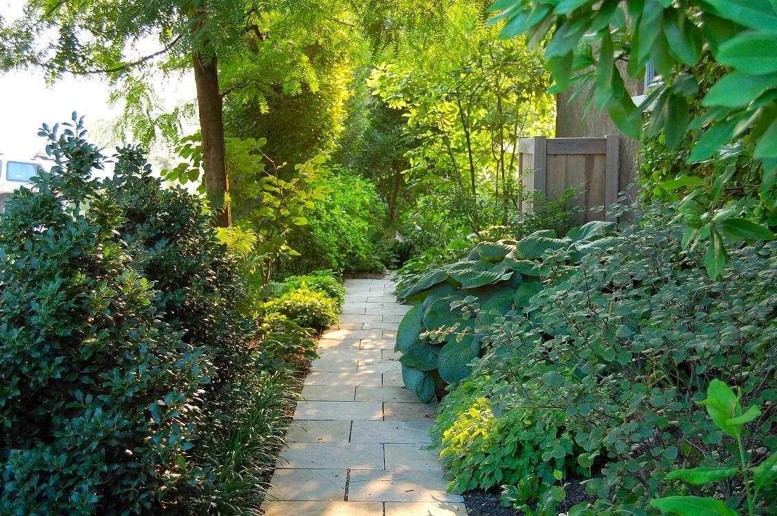 Dry laid fieldstone walkway and giant hosta