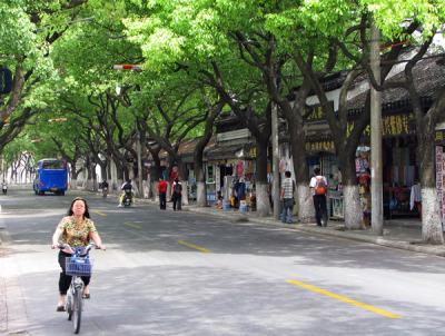 SuzhouStTrees.jpg