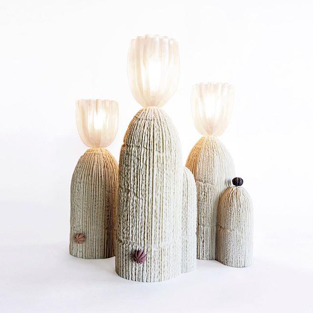 RBS Cactus lamps 2018 #rbsseries #RBSserieslamps