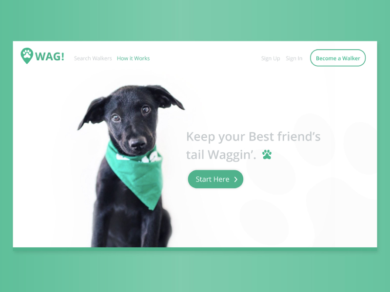 Wag! - Concept Microsite Redesign